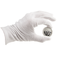 Pair of Coin Gloves