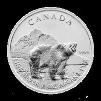 1 oz Silbermünze kanadischer Graubär 2011 | Verfärbt und fleckig