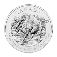1 oz 2013 Canadian Wood Bison Silver Coin | Toned and Spotted