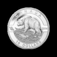 1/2 oz 2014  O Canada Serie - Grizzly Bear Zilveren Munt