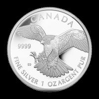 1 oz 2014 Birds of Prey Series | Peregrine Falcon Silver Proof Coin