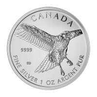 1 oz 2015 Birds of Prey Series | Red-Tailed Hawk Silver Coin