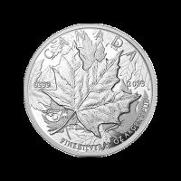 Moneda de Plata Proof 25° Aniversario de la Hoja de Arce Alto Relieve Piedfort 1 oz 2013