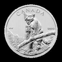 Moneda de Plata Puma Canadiense 2012 de 1 oz