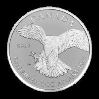 1 oz Silbermünze Greifvögel Serie | Exotischer Falken - Polierte Platte (invertiert) 2016