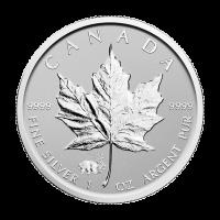 1 oz Silbermünze - kanadisches Ahornblatt Panda Sonderprägezeichen - Polierte Platte (invertiert) 2017