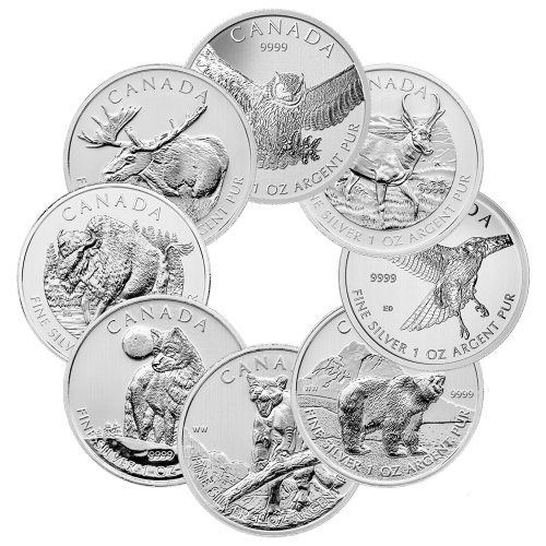 1 oz Random Year Our Choice of Royal Canadian Mint Silver Coin | Toned and Spotted