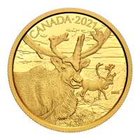 2021 Royal Canadian Mint | Canadian Wildlife Portraits: The Caribou Gold Coin