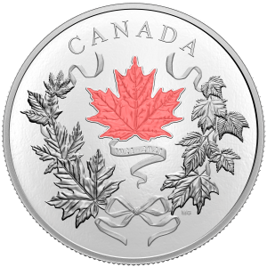 10 oz 2021 Royal Canadian Mint   National Colours Silver Coin